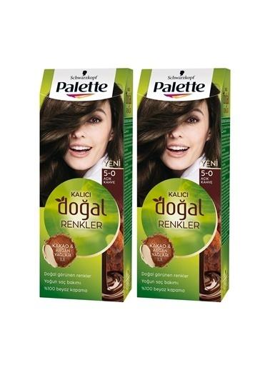 Palette Palette Kalıcı Doğal Renkler 5-0 Fındık Kahvesix 2 Paket Renkli